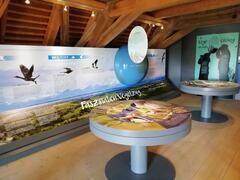 "Ausstellung ""Europareservat am Unteren Inn"" im Salzstadl"