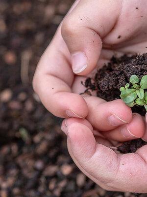 Workshops und Community für mehr Nachhaltigkeit im Mondseeland
