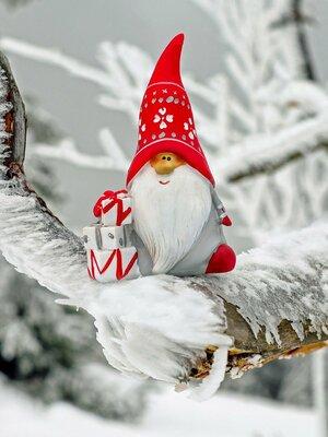 Nikolausfahrten mit der SchafbergBahn