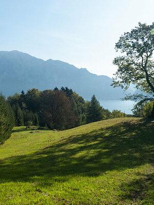 Waldbaden am Edelkastanienweg