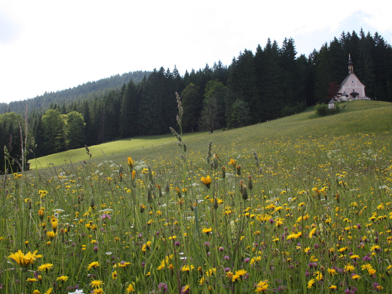 """On the panoramic trail you pass the church on the \""""Kalvarienberg\"""""""