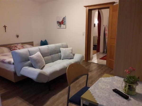 Zimmer mit Schlafsofa (2 m x 1,20), SAT-TV