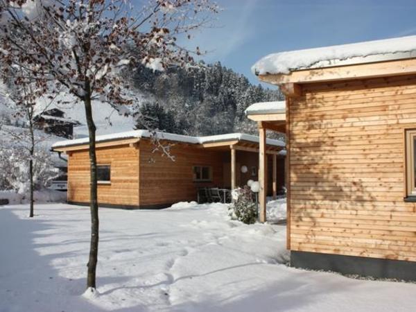 Familienurlaub_Camping_Hund_Zillertal