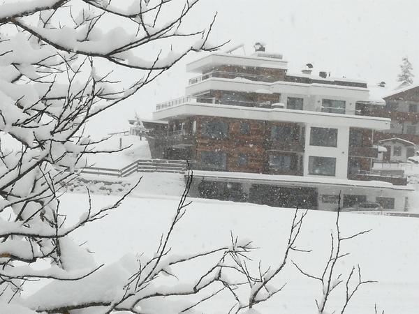 Winterfoto 29.12.2018 - 3