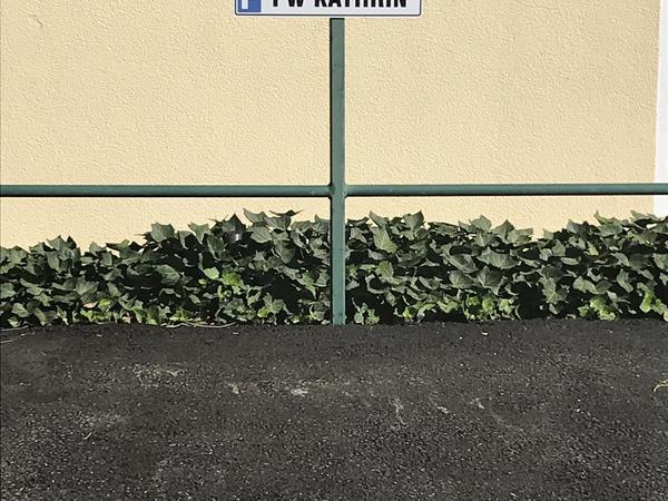 eigener Parkplatz direkt vor der FW