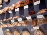 Brots%c3%bcchtig Titelbild