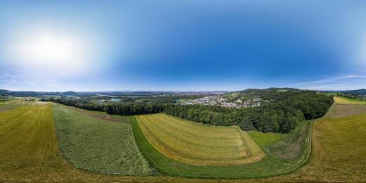 Steyregger Umland - © Stadtgemeinde Steyregg