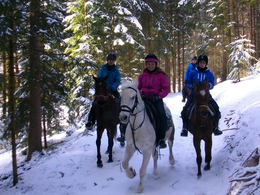 Week of Winter Horseback Riding