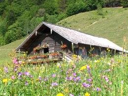 Mayerlehenhütte auf der Gruberalm  (© ©Mayerlehenhütte auf der Gruberalm)