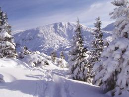 Skifahren (© STMG)