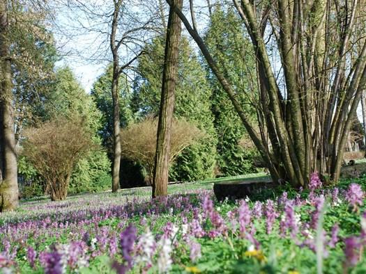 Schlosspark by Innova Projecting GmbH.jpg (© Mining)