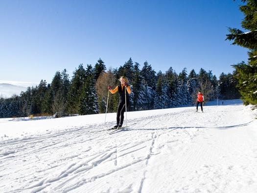 Langlaufspaß im Böhmerwald
