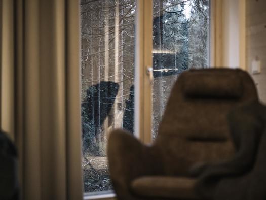 Sessel im Wohnbereich (© Ramenai Das Böhmerwaldlerdorf)