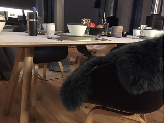 Tisch mit Tellern und Tassen sowie Stühle, zum Teil mit Fellauflagen. (© Reisch-Raich)