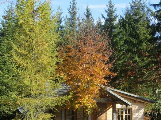 Lärchen-Hütte