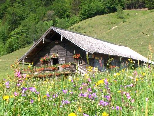 Mayerlehenhütte (© Fuschlsee Tourismus GmbH)