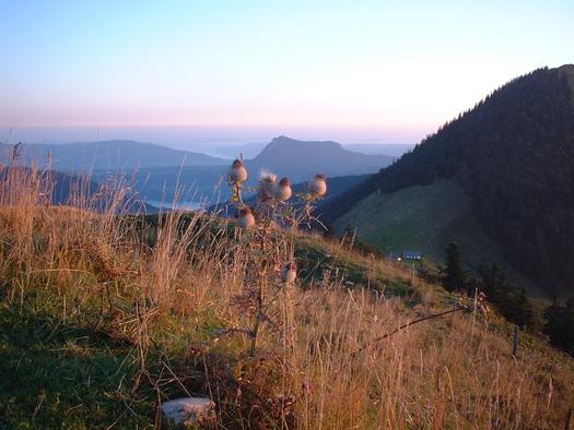 Abenddämmerung Loibersbacher Höhe (© Tourismusverband Faistenau)