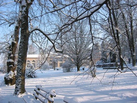 kurpark winter 1.JPG (© Kurpark Winter)