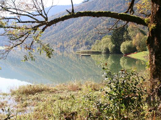 Wanderung um den Hintersee.jpg (© Gasthof Hintersee)