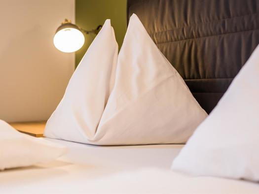 2017-01-21-Hotel-Obermayr-Ebenau--®Michael Gr+Â+ƒi