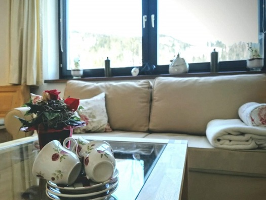 Gemütliche Sitzecke am Fenster, sowie Tisch mit Teetassen und mit Blumen im Vordergrund. (© Adelheid Haböck)