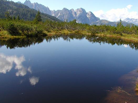 Landschaft in Gosau. (© D7)