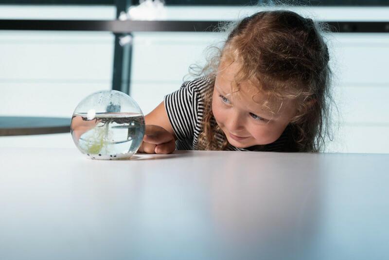 Kids' Research Laboratory