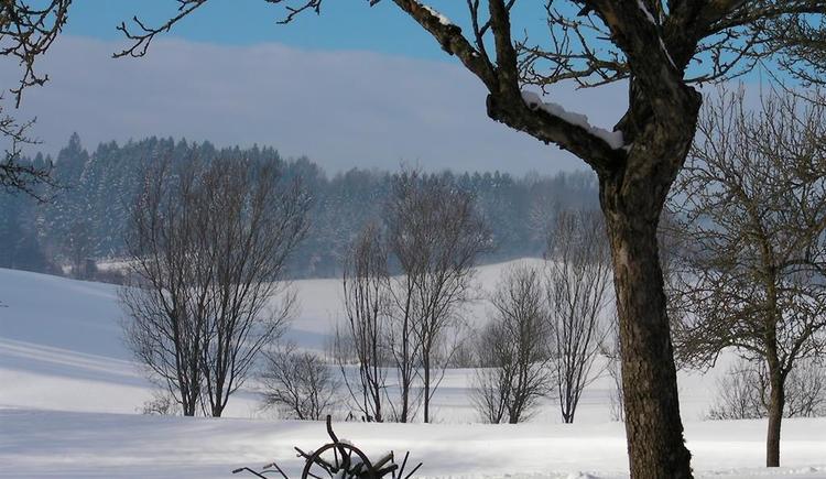 Garten mit Winterlandschaft (© Privat)