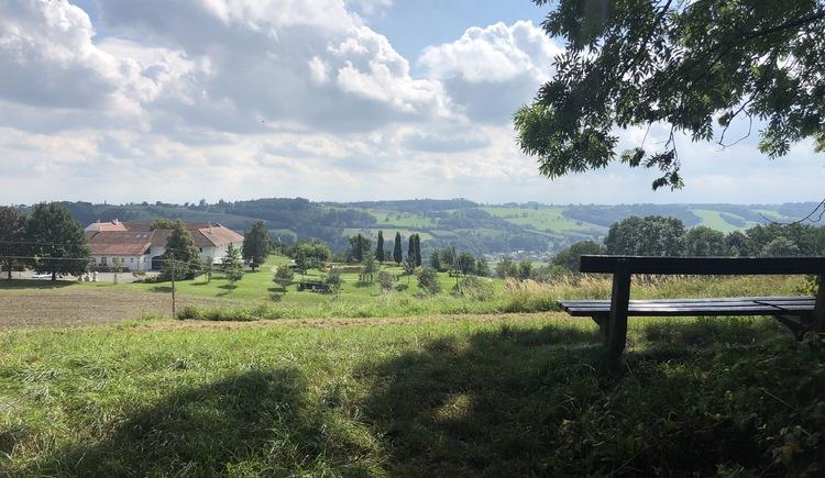 Magdalenaberg-Runde (© Urlaubsregion Vitalwelt Bad Schallerbach / Sarah Holzer)