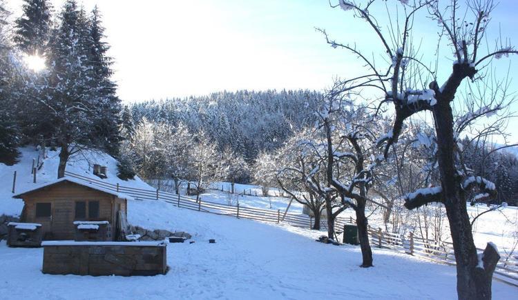 Blick auf den Garten Süd (© GG)