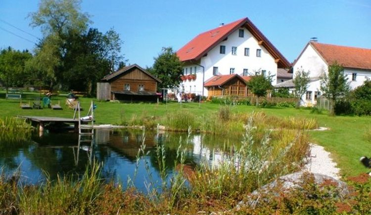 Sommer am Rothstadlerhof