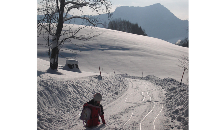 child is sitting on the snow-covered landscape, in the background mountains . (© Schafleitner-Kroiß)