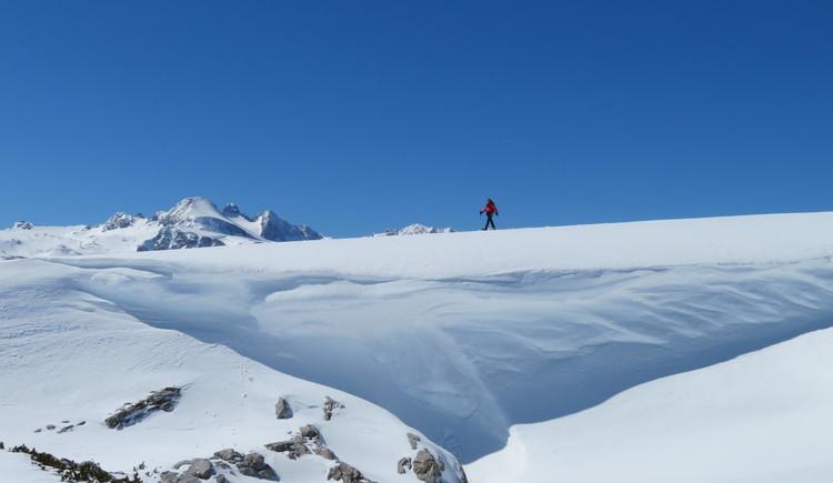 Schneeschuhwanderer am Dachsteinplateau bei klarem blauen Himmel. (© Betty Jehle)