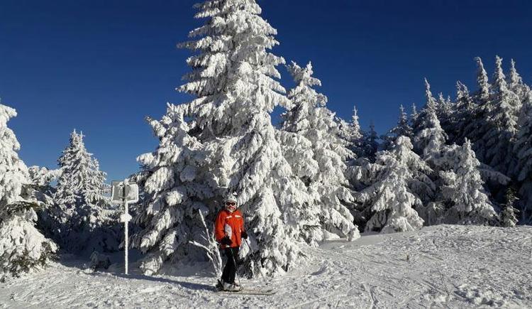 Skigenuss im Winter (© privat)