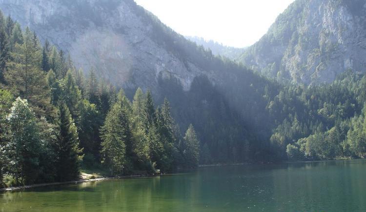 DSC01429 (© Campingplatz Seebauer)