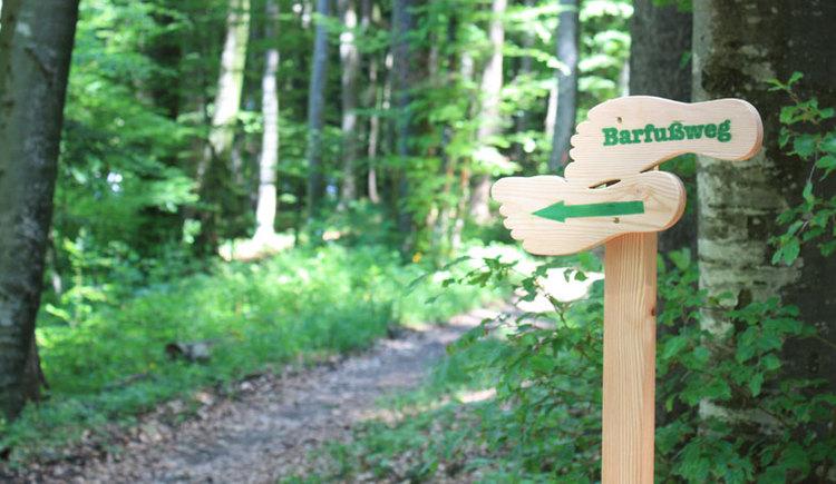 Waldweg mit Hinweisschild Barfußweg mit Waldweg und Bäumen. (© Sandy Reindl / www.reiwo.at)