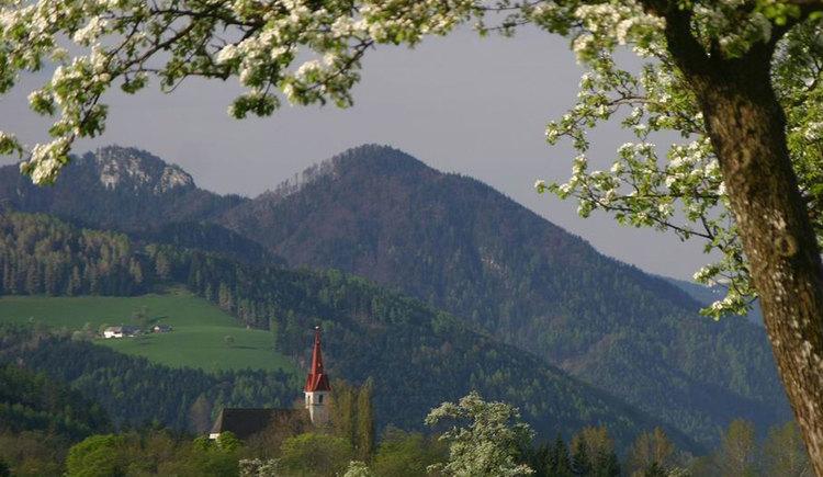 Wandertour Eibenedtrunde Pettenbach