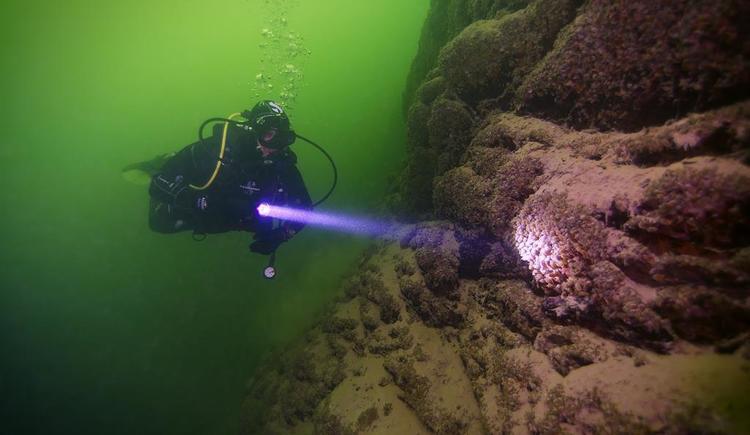 Adventure Diving - Taucher (© Adventure Diving)