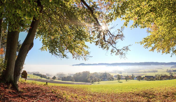 Geboltskirchen (© Tourismusverband Urlaubsregion Vitalwelt Bad Schallerbach / Mühlleitner)