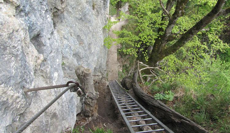 Normalweg auf die Drachenwand, Leiterversicherung. (© www.mondsee.at)