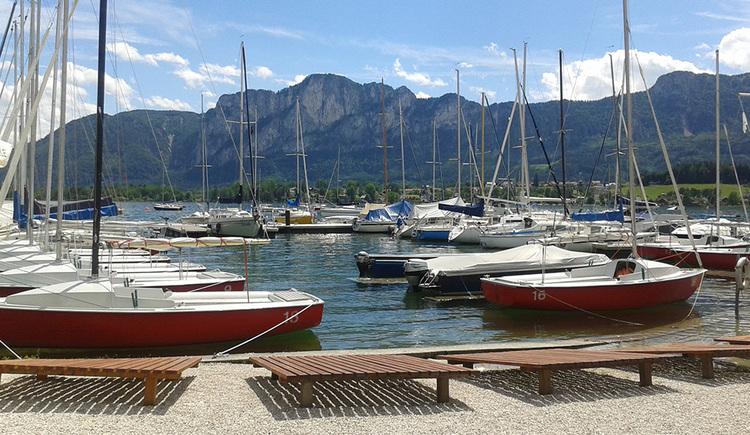Segelschule Mondsee, Boote, Drachenwand, Liegen