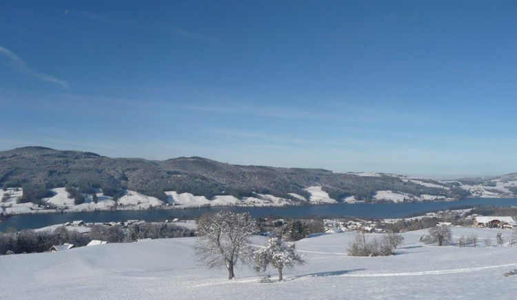 view at the snowy landscape. (© Tourismusverband MondSeeLand)