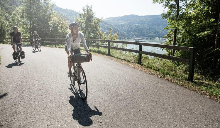 Radfahren am Donauradweg. (© Oberösterreich Tourismus GmbH/Robert Maybach)