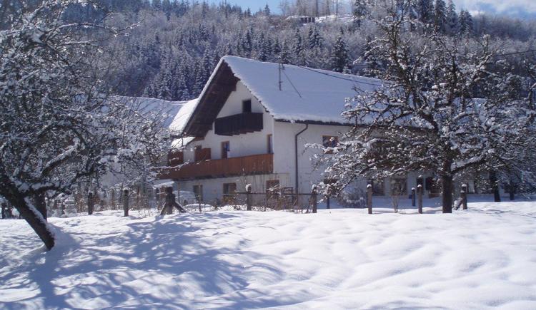Verschneites Steinwänd (© sieberer)
