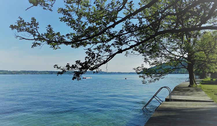 Bundesforstebad Blick nach Seewalchen