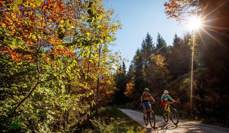 Zwischen Wäldern gehts am zweiten Teil der E-bike Runde durchs Weißenbachtal. (© Erwin Haiden bikeboard.at)