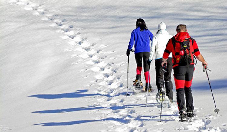 Schneeschuhwandern im Attergau, für Nächtigungsgäste kostenlos. (© Herbert Benedik)
