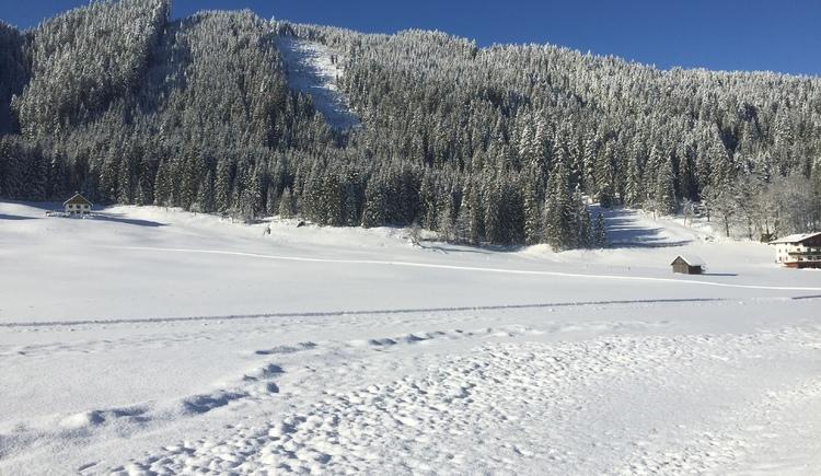 Spazieren sie durch Unsere Winterwunderwelt