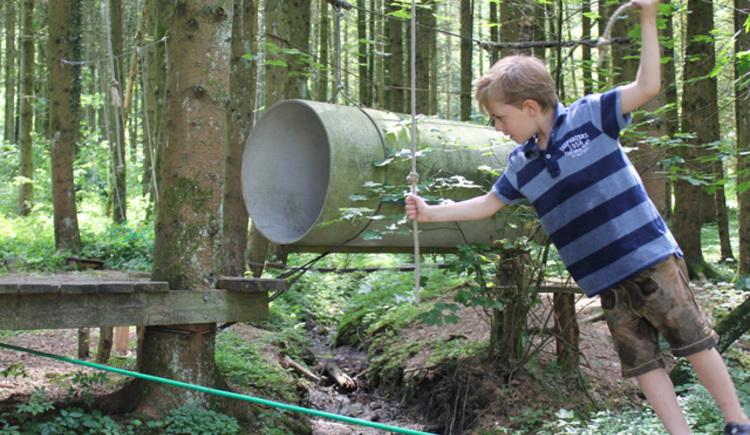 Kind im Niederseilgarten Attergau. (© Tourismusverband Attersee-Attergau, Elisabeth Baumann)