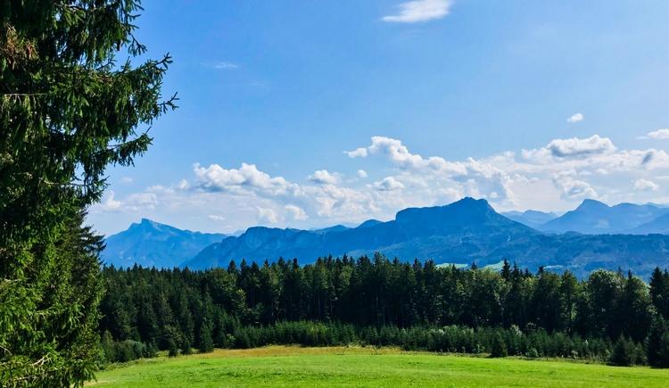 Blick zum Schober und zur Drachenwand (© Salzkammergut / Harald Maier)